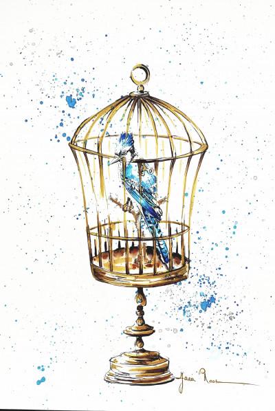 Gezocht: Blauwe vogel.